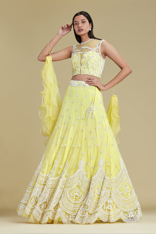 Lemon Teardrop Lehenga Set