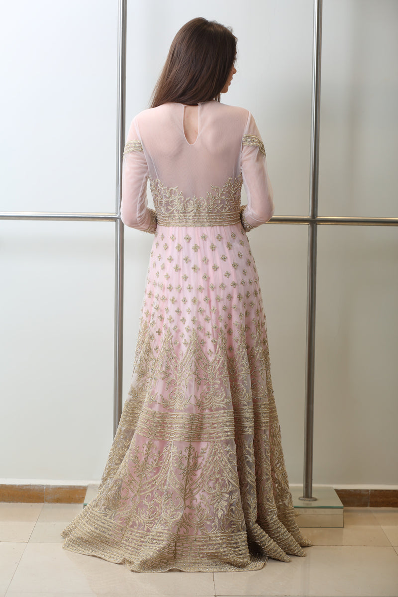 Baby Pink & Gold Embroidered Gown