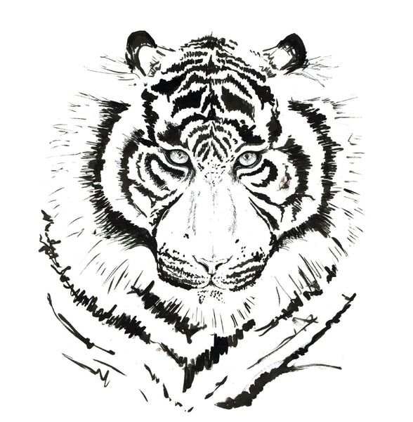 JanaRoos-Illustrations-Black&White-White tiger