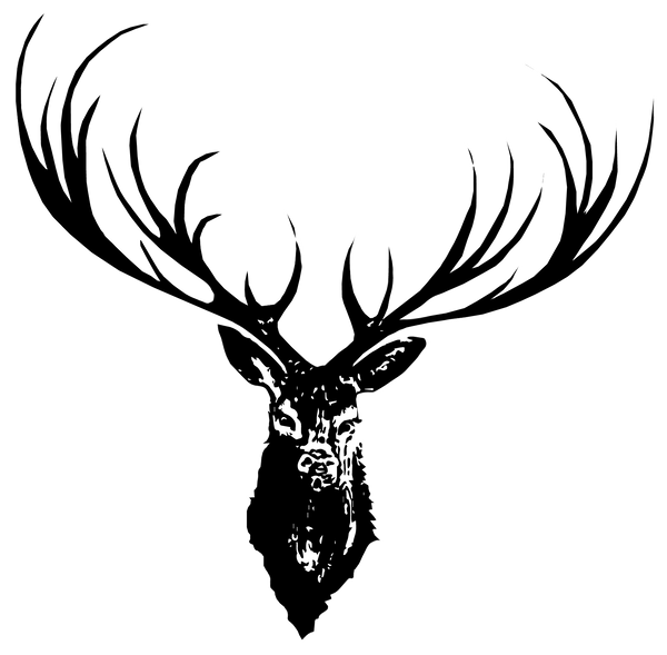 JanaRoos-illustration-Black&White-deer-reindeer-antler