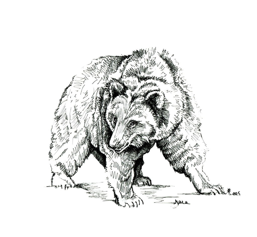 JanaRoos- Illustration - Black & white - Grizzly
