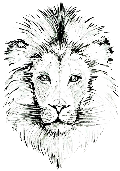 JanaRoos- Illustration - Black & white - Lion