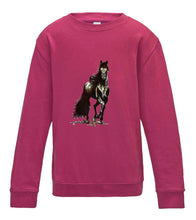 JanaRoos - T-shirts and Sweaters - Kid's Sweater - Packshot - Hand drawn illustration - Round neck - Long sleeves - Cotton - Hot Pink - Fel roos- Black Merrie horse - paard