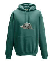 JanaRoos - Hoodie - Packshot - Hand drawn illustration - Round neck - Long sleeves - Cotton - jade -pugg- mops