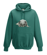 JanaRoos - Hoodies - Kids Hoodie - Packshot - Hand drawn illustration - Round neck - Long sleeves - Cotton - jade - appel blauw zeegroen - pugg - mops - dog - hond