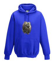 JanaRoos - Hoodies - Kids Hoodie - Packshot - Hand drawn illustration - Round neck - Long sleeves - Cotton - royal blue - royaal blauw - golden lion monkey - leeuwaapje