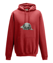 JanaRoos - Hoodie - Packshot - Hand drawn illustration - Round neck - Long sleeves - Cotton - fire red -pugg- mops