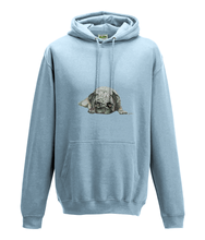 JanaRoos - Hoodie - Packshot - Hand drawn illustration - Round neck - Long sleeves - Cotton - sky blue -pugg- mops