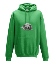JanaRoos - Hoodie - Packshot - Hand drawn illustration - Round neck - Long sleeves - Cotton -green -pugg- mops