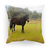 Custom Horse or Pony Pillow Cover
