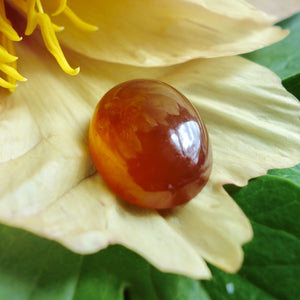 Hessonite Garnet, 21.74 Ct. Large Rare Honey Color, Cabochon