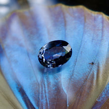 Blue spinel on butterfly wing, Old Virginia Gem Co. Lynchburg, VA.