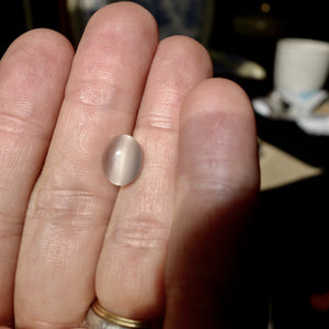 Cat's Eye Moon Stone (cats eye moonstone) 3.50 ct. Cabochon, Nice Asterism