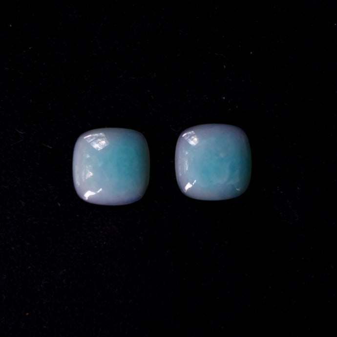Rarest Peruvian Opal Flower Blossoming Ice Blue and Mulberry