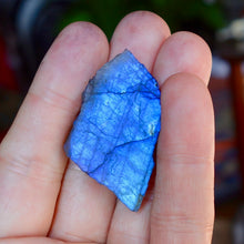 The Finest, Omni Directional Electric Blue Labradorite Specimen
