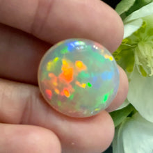 Crystal Opal, 15.65 ct. Round Cab, High Dome, Flagstone Pattern