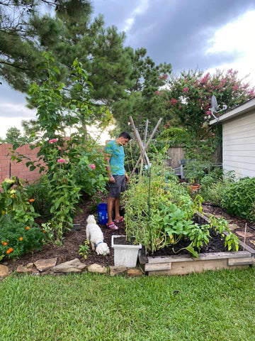 Fruits and veggies, gardening with Ethnic