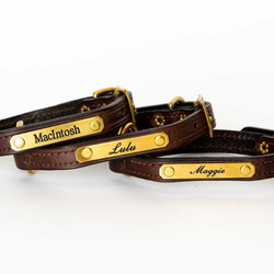 Bluegrass Provisions Co.: Personalized Small Dog Collar