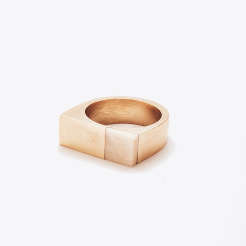 Brass and Bone Plane Ring
