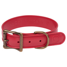 WigWag Dog Collar