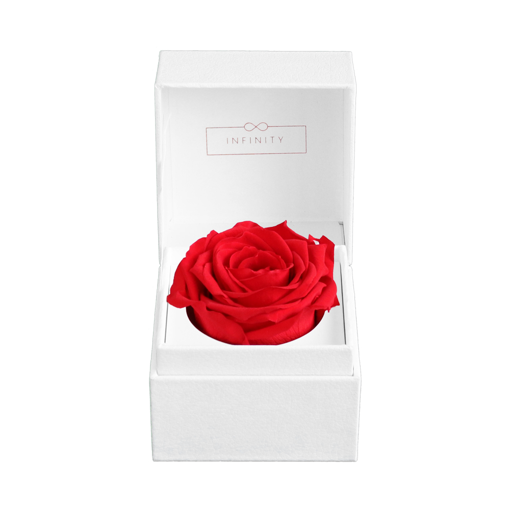 Single Rose Box,Infinity Special,Infinity Flowerbox, Blumenbox