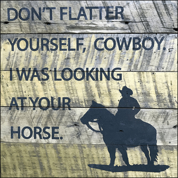 Dont flatter youself cowboy I was looking at your horse