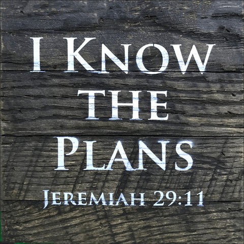 I Know the Plans ~Jeremiah 29:11 (6x6)