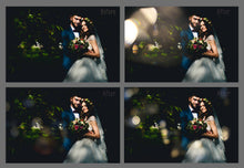 Wedding Art Bokeh Overlays