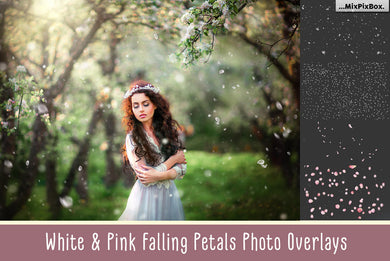 Falling White and Pink Petals Overlays
