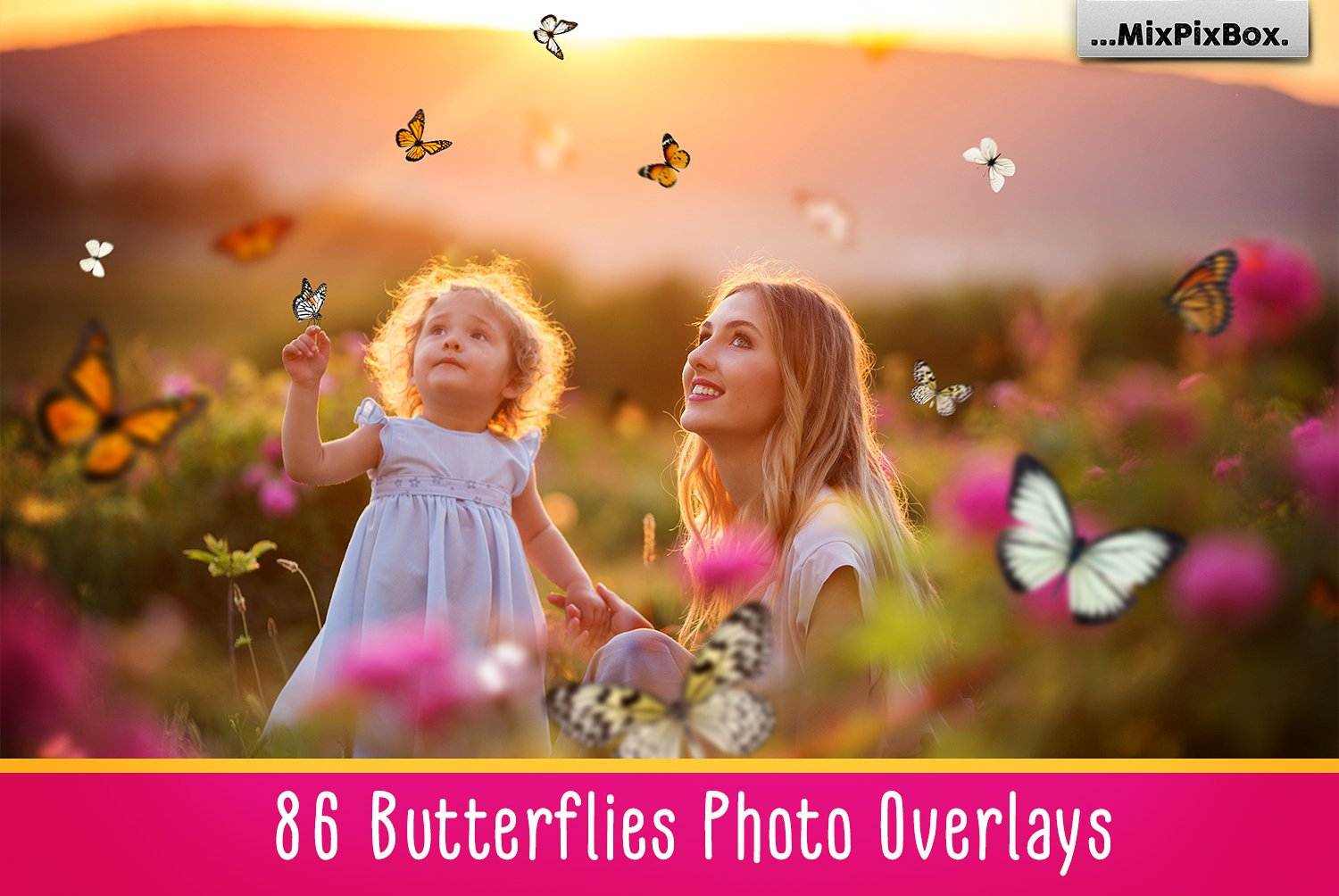 86 Butterflies overlays
