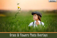 Grass and Flowers Overlays