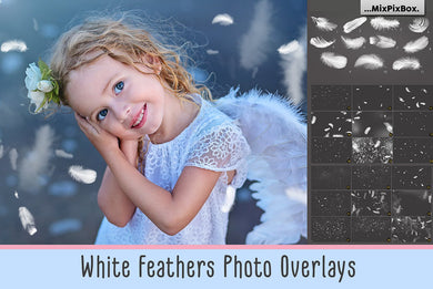 Feather Overlays