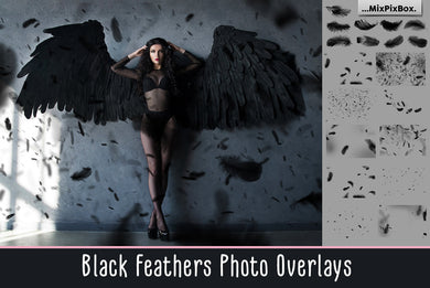 Black Feather Overlays