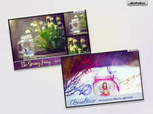 MixPixBox Overlays 55 % OFF Bundle Photoshop Fairy Digital Backdrop