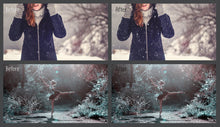 MixPixBox Overlays Natural Snow Overlays
