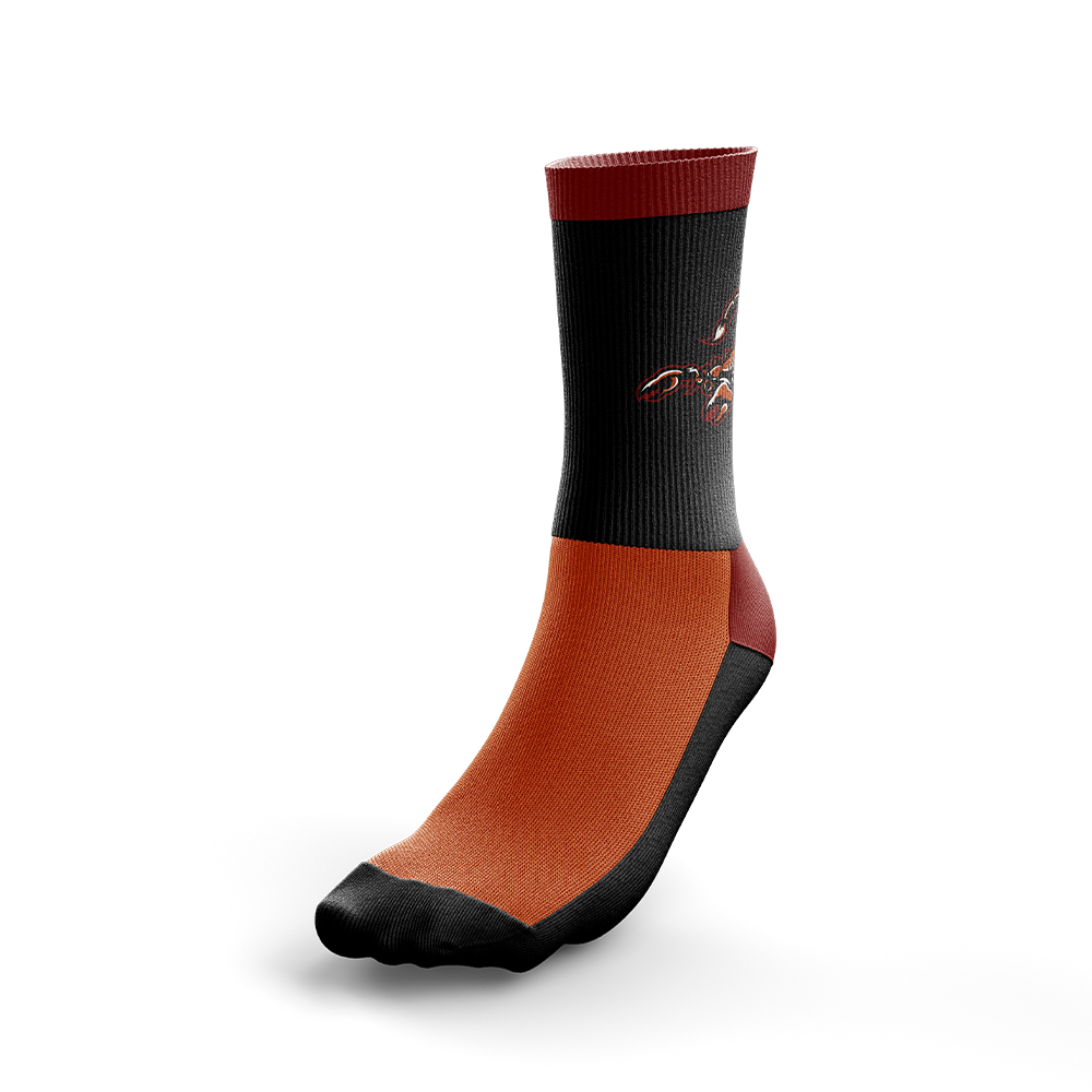 Arizona Scorpions Socks