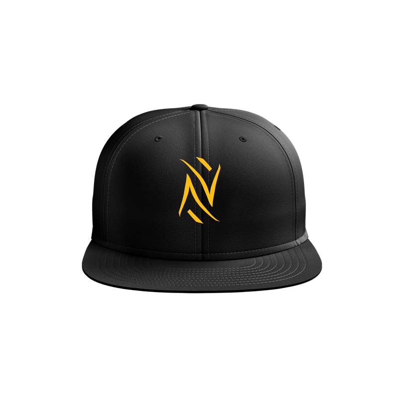 NGenius Logo Hat