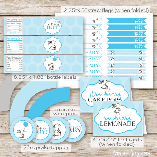 Blue Bunny Baby Shower Package