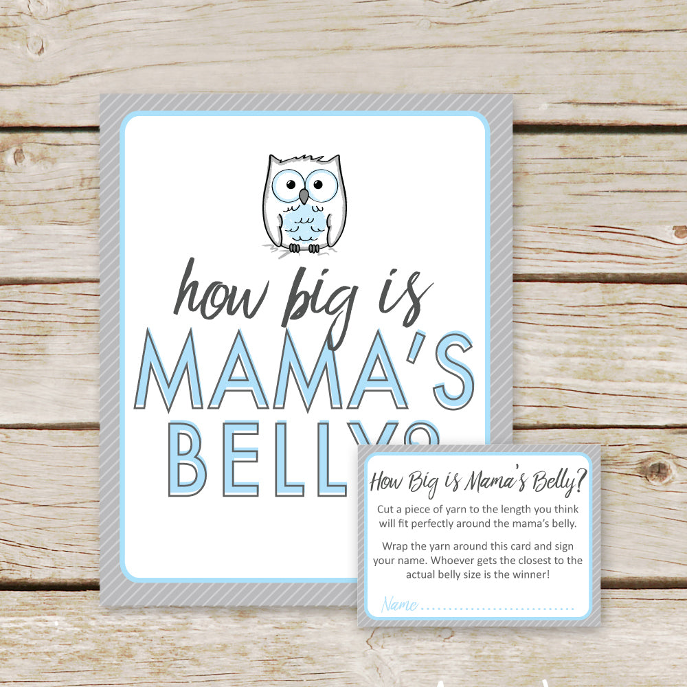 Blue Owl How Big is Mommy's Belly