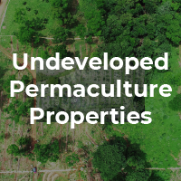 Undeveloped Permaculture Properties