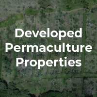 Developed Permaculture Propertie