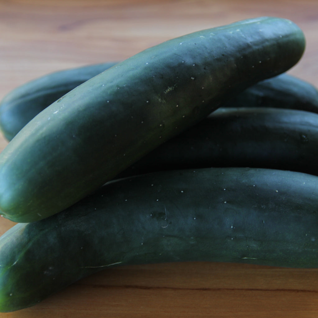 Organic Cucumber (5kg) Add On