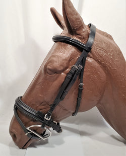 Dressage Bridle with Integrated Flash