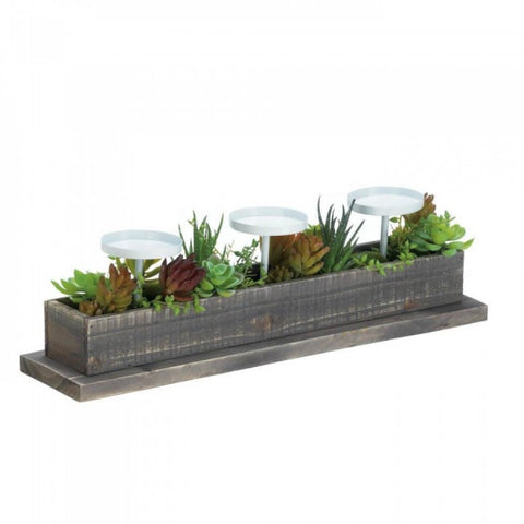 Reclaimed Wood Succulent Candle Display - F. W. Woolworth Co. Online Store