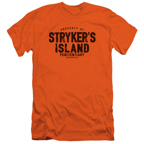 Superman - Strykers Island Short Sleeve Adult 30/1 - F. W. Woolworth Co. Online Store