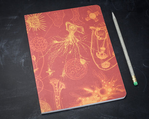 Softcover Lined Notebook Bullet Journal