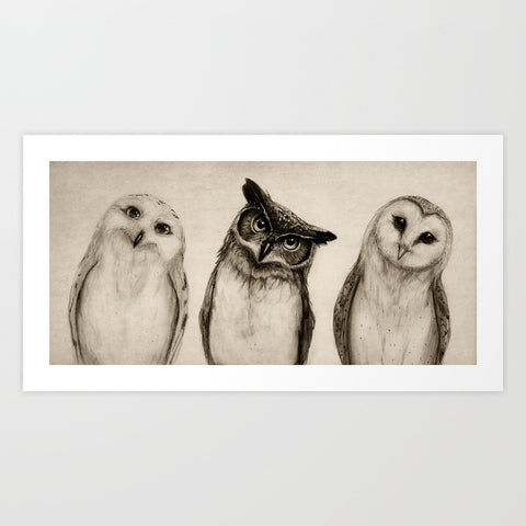 The Owls 3 Art Print - F. W. Woolworth Co. Online Store