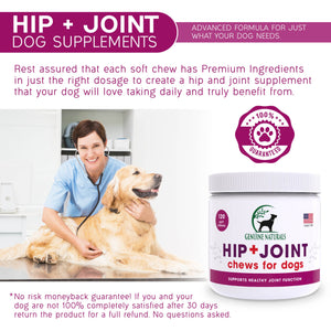 Hip and Joint Supplement for Dogs 120-Count