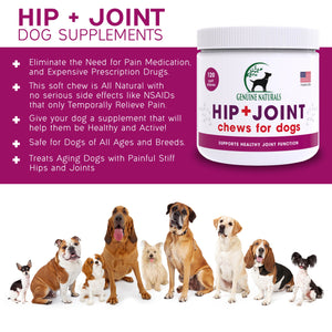 Hip + Joint Supplement