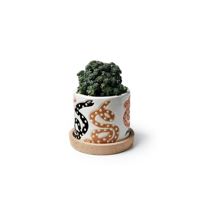 Serpent Planter